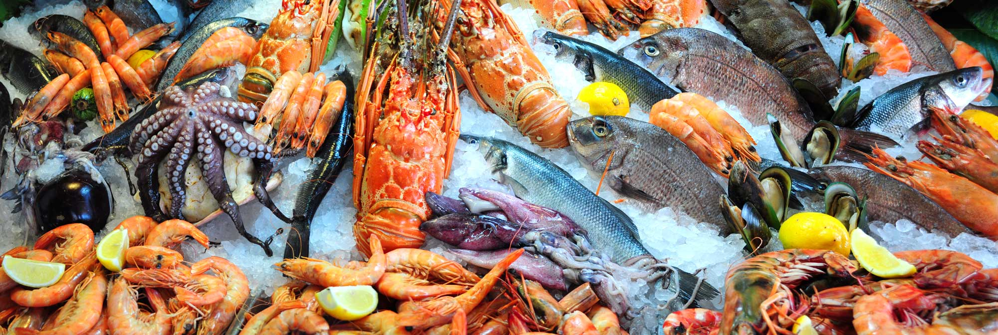 Frozen Foods Seafood Customs Clearance